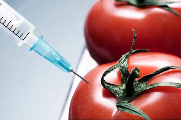 В Україні посилять контроль у сфері поводження з ГМО